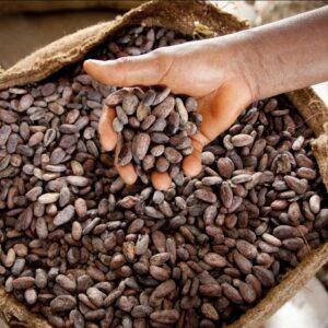 Čokoláda s původem